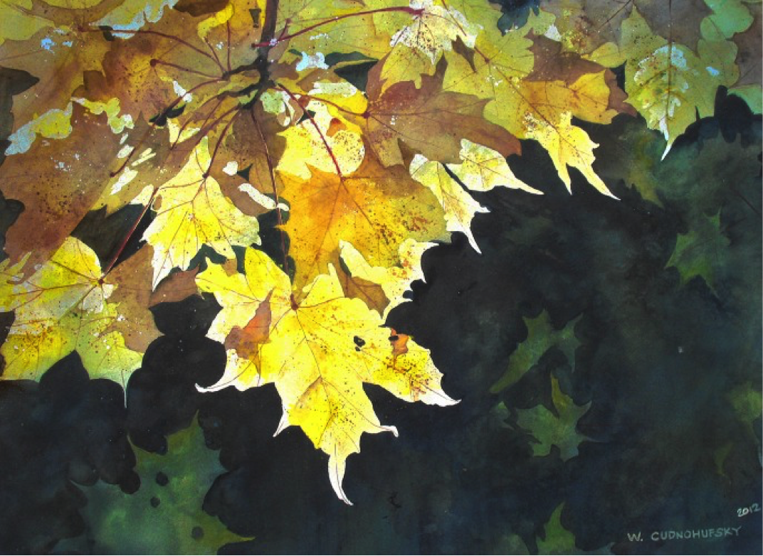 """Transparent Maple Leaves"" by Walter Cudnohufsky"