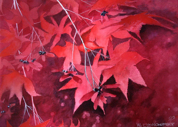 Red-japanese-Maple-leaves